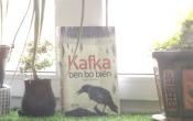 MN1CS: Kafka bên bờ biển
