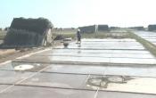 Phóng sự: Giải pháp cho nghề muối