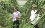 Phụ nữ Việt ( 20/10/2021 )