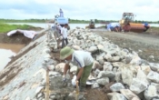 PS TRỰC NINH - Lan tỏa sức dân trong xây dựng nông thôn mới