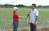 Thời tiết nông vụ ( 03/08/2020 )