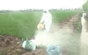 Thời tiết nông vụ ( 06/04/2020 )