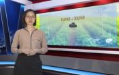 Thời tiết nông vụ ( 18/05/2020 )