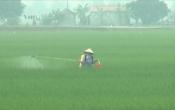 Thời tiết nông vụ ( 26/4/2021 )