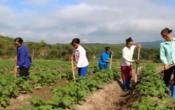 Thời tiết nông vụ ( 30/8/2021 )