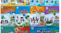 Bộ Giáo dục cần cấm triệt để việc biến trường học thành đại lý bán sách