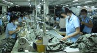 Doanh nghiệp có lại đơn hàng, thị trường lao động khởi sắc dịp cuối năm