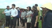 Hội thảo chuyển giao khoa học công nghệ thuốc trừ sâu thảo mộc Anisaf SH cho hội viên phụ nữ xã Nghĩa Hồng- huyện Nghĩa Hưng
