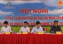 Hội nghị sơ kết sản xuất vụ hè thu, vụ mùa 2018 và triển khai kế hoạch sản xuất vụ đông xuân 2018 – 2019 tại các tỉnh phía Bắc