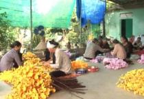 Phụ nữ Việt ( 25/09/2019 )