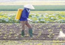 Thời tiết nông vụ ( 03/02/2020 )